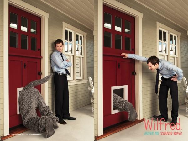 dogdoor-wilfred-sezonul-1-wallpaper