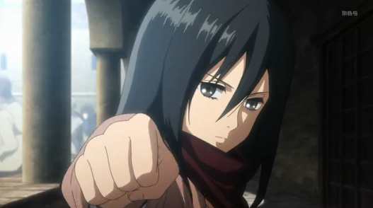 Attack On Titan Mikasa Punch