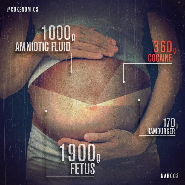 narcos-hamile
